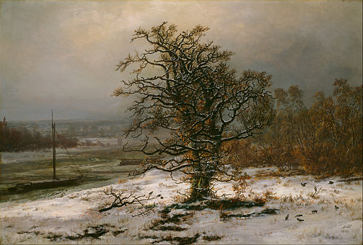 Oak Tree by the Elbe in Winter, Johan Christian Dahl