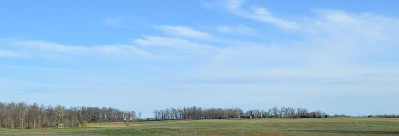 horizon line near Laconia, Indiana showing early spring trees blue sky