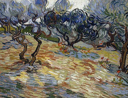 an olive orchard as painted by Van Gogh