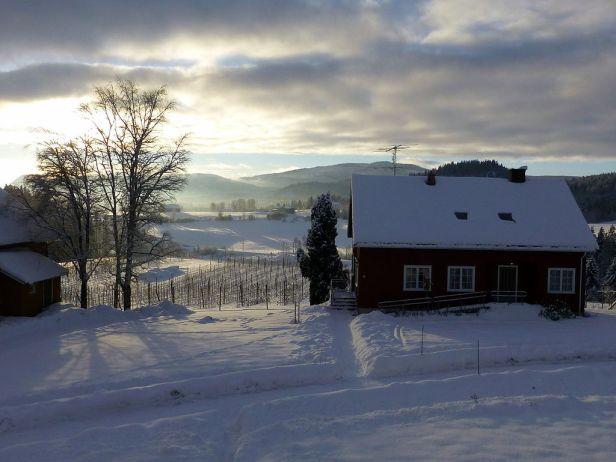 Christmas_morning_in_Børte