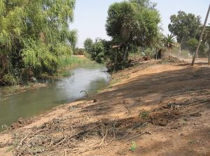 scene at Jordan River, Israel river, trees, dusty river bank