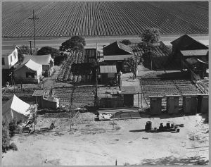 outskirts of Shafter, California, 1938 homes and fields