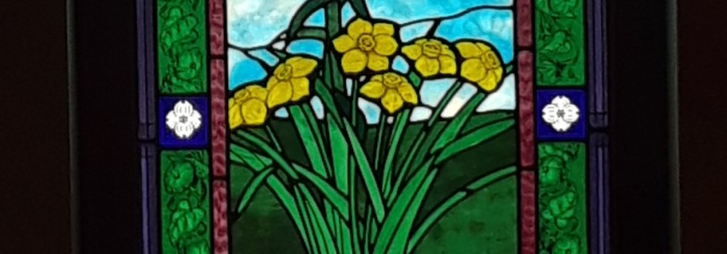 stained glass daffodils