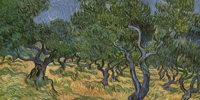 van Gogh painting of olive orchard